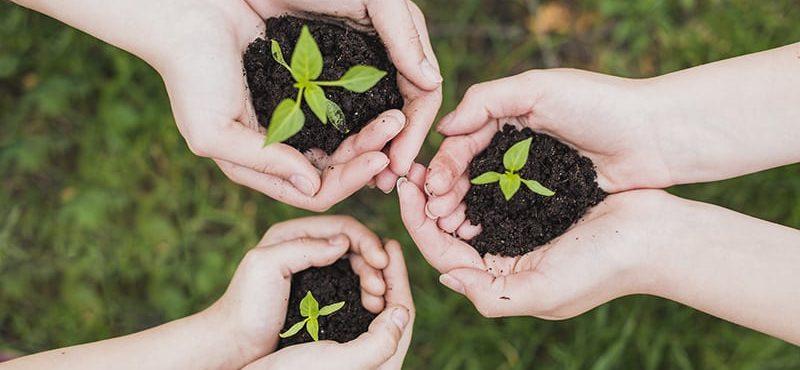 Como aplicar a sustentabilidade na escola
